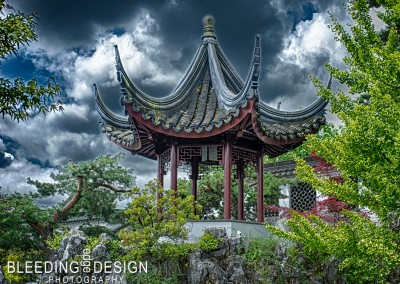Sun Yat Sen Garden 1