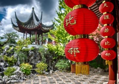 Sun Yat Sen Garden 2