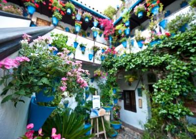 Hanging Gardens of Cordoba