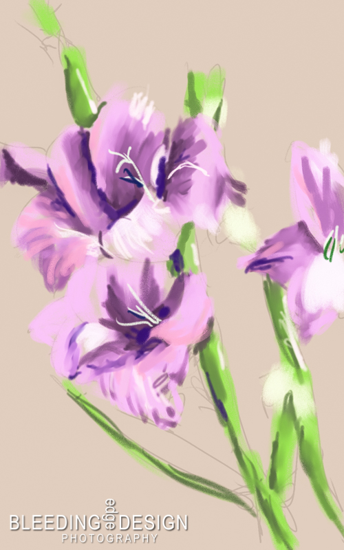 a digital painting of gladioli
