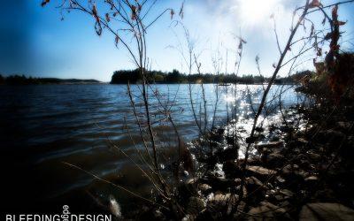 Lake Cuyamaca