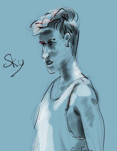 sky-2